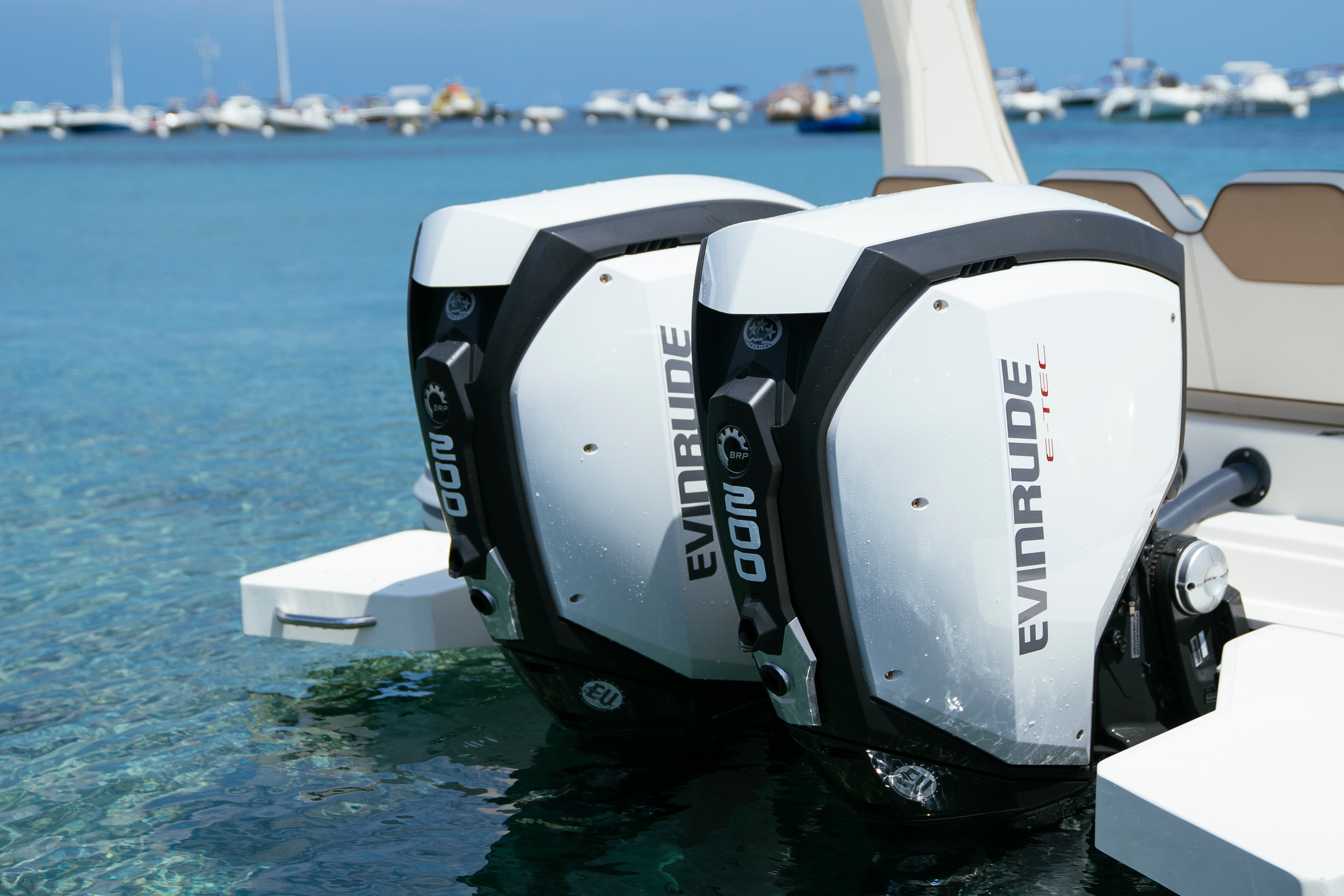 Close-up of a pair of Evinrude boat motors