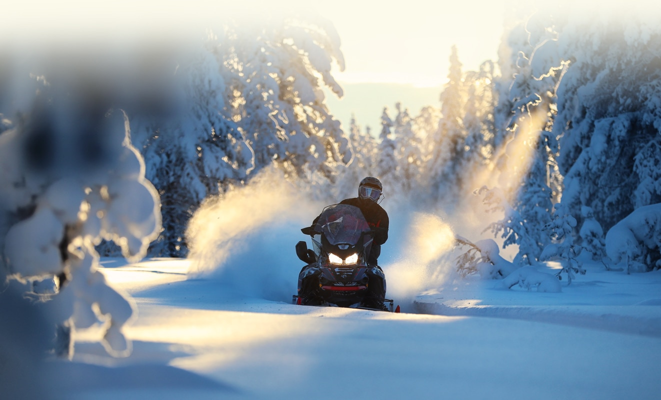 A man is riding his Lynx Commander Snowmobile Model throught the snowy forest at sunset