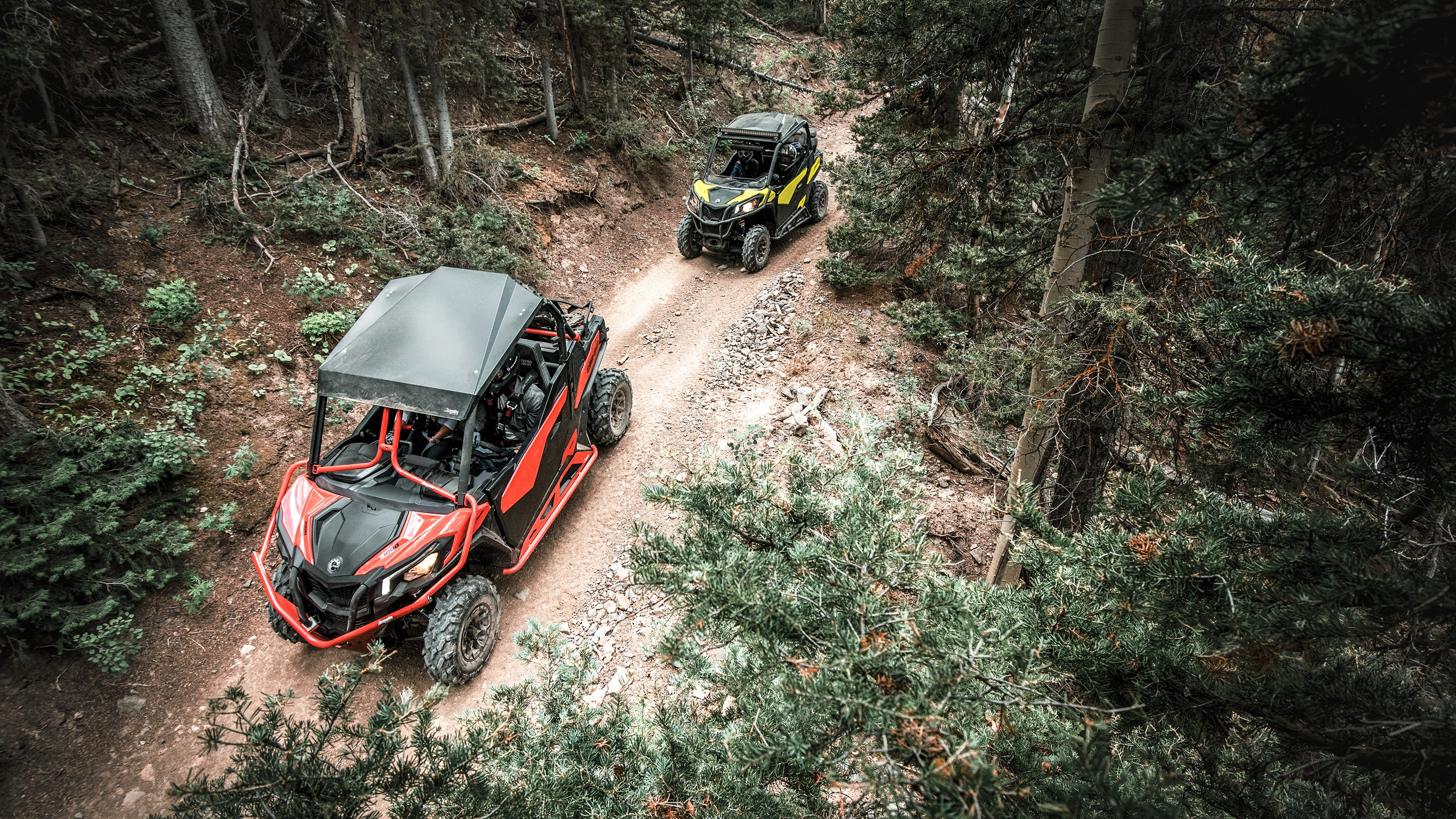 Pair of Maverick Trail moving in a dense forest trail